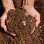 Analisi del terreno e piani di coltivazione