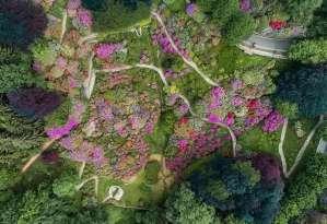 Dalle Alpi al Mediterraneo: in viaggio tra i Parchi e i Giardini italiani