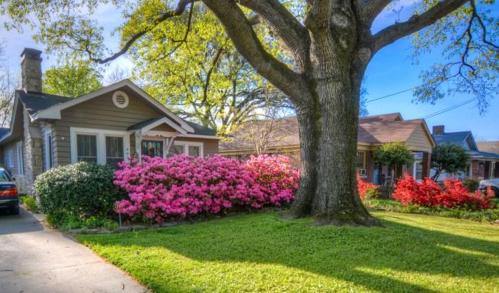 spring garden Memphis
