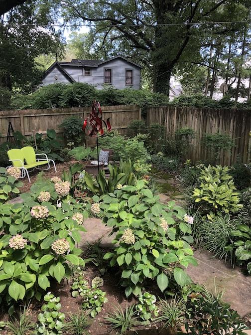Chris Harris back garden