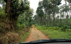 14---A-drive-down-the-stone-laden-road-towards-Garakeri