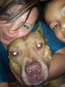 Fresno Police Search Wrong House, Shoot Family's Pet Dog