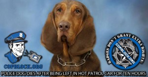 Police Dog Dies after Being Left in Hot Patrol Car for Ten Hours