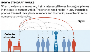 How Stingray Works
