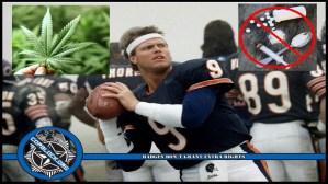 Jim McMahon, Chicago Bears Superbowl QB, Urges NFL to Allow Medical Marijuana Use
