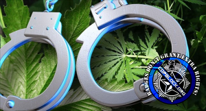 Police Claimed I Had Marijuana, But I Didn't