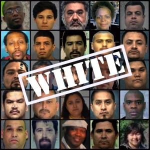 Police Caught Whitewashing DPS Racial Profiling Stats