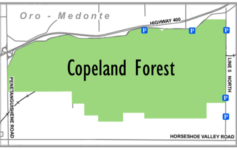 Copeland Forest locator map