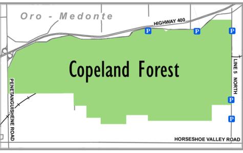 Copeland Forest locator map