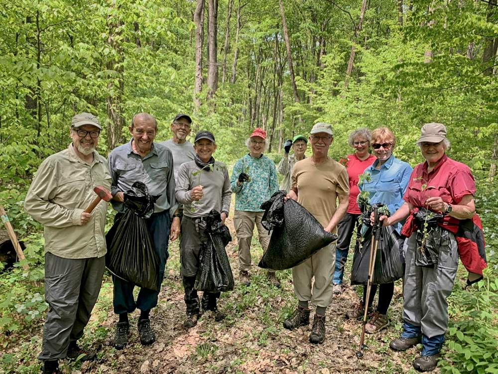 a group of male and female volunteers pose while protecting the copeland forest from the garlic mustard invasive species