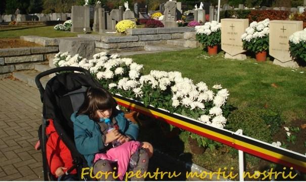 1-nov-2012-12-flori