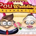 Pou Wedding Preparation