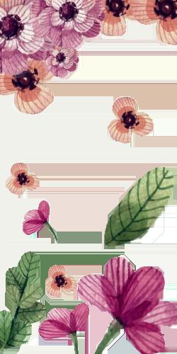 Coque fleurs à fond transparent I
