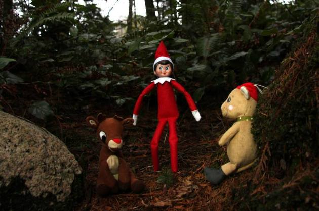 Elves like to hike with a buddy. It's always nice to have a friend if you run into trouble. If you get lost, stay together. #SARelf