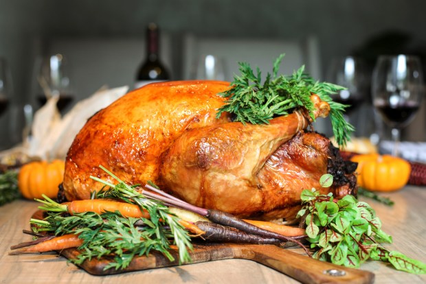 Zucca Coral Gables Miami Thanksgiving catering