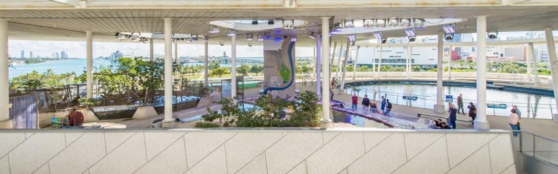 Frost Science Aquarium Miami