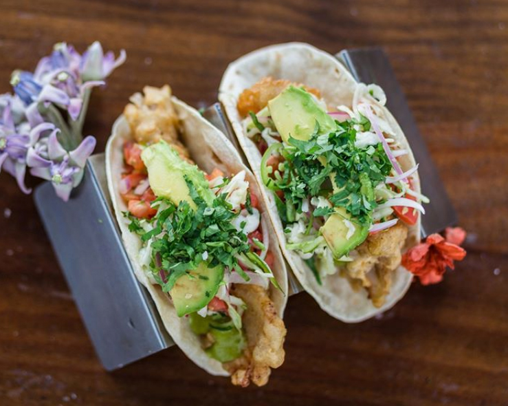 Coyo Taco in Coral Gables fried grouper tacos