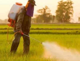 ambiente diserbante glifosato m5s natura pesticidi cronaca glocal politica