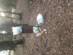 """I postumi della festa al Parco, i residenti: """"Chi è incaricato di pulire?"""""""