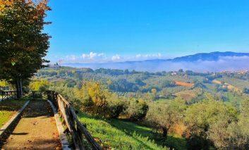 Agriturismo senza crisi, l'Umbria al quarto posto per quota di mercato