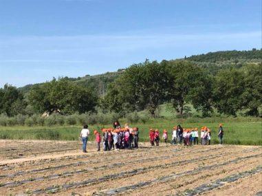 Le scuole a lezione di orticultura: le visite agli Orti Sociali del Comune 3