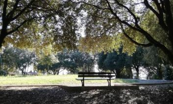 Parco del Colle della Trinità in vendita: il vincolo di area boscata può attendere