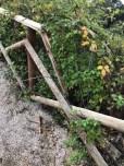 ambiente associazione belvedere colle della trinità cronaca ellera-chiugiana