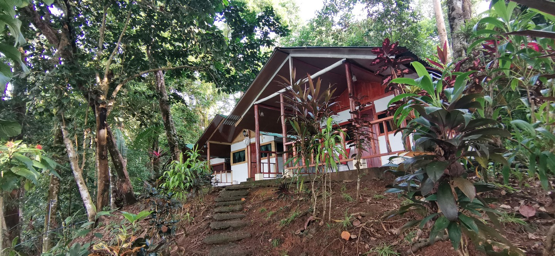 cabins19
