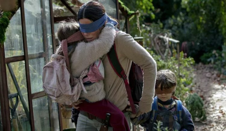 Netflix issues warning over 'Bird Box challenge'