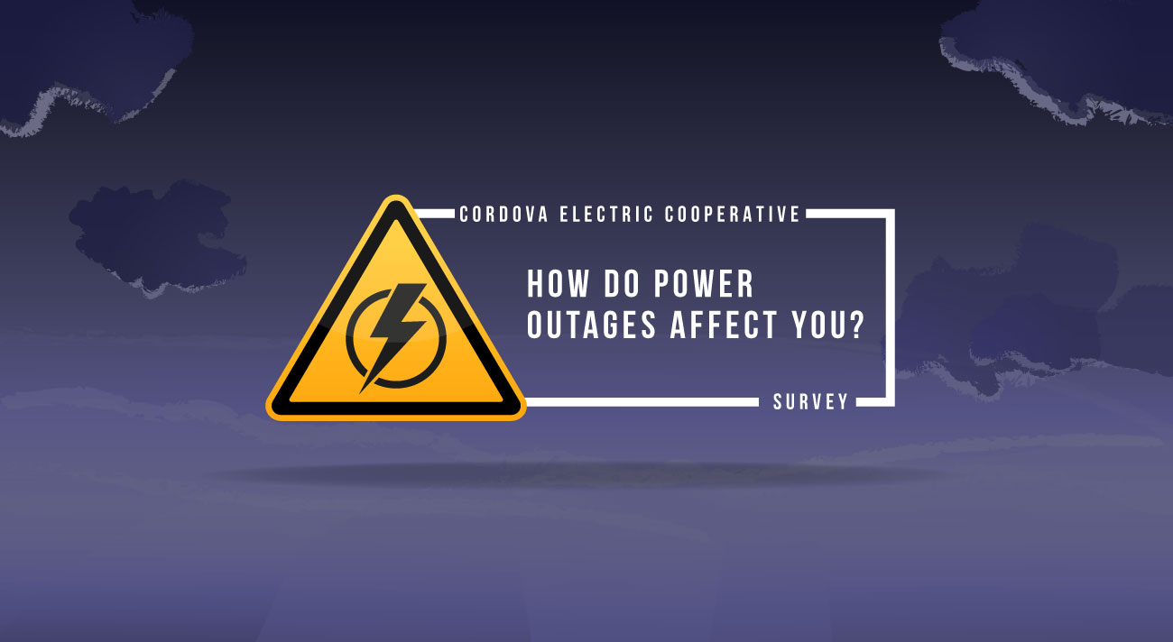 Power Outages Survey