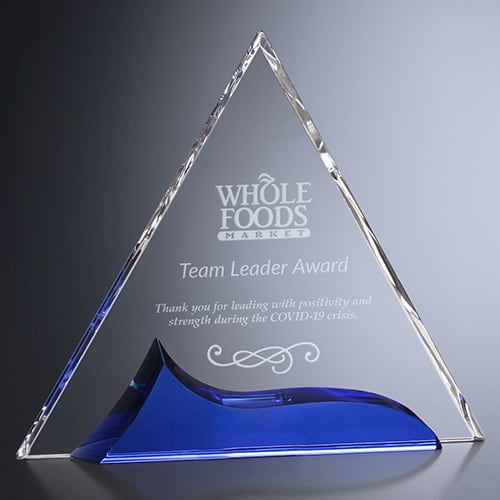 Team Leader Award Example Image