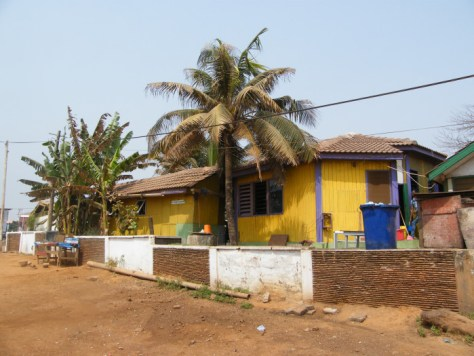 A mustard yellow house with tall banana trees and a coconut tree in front