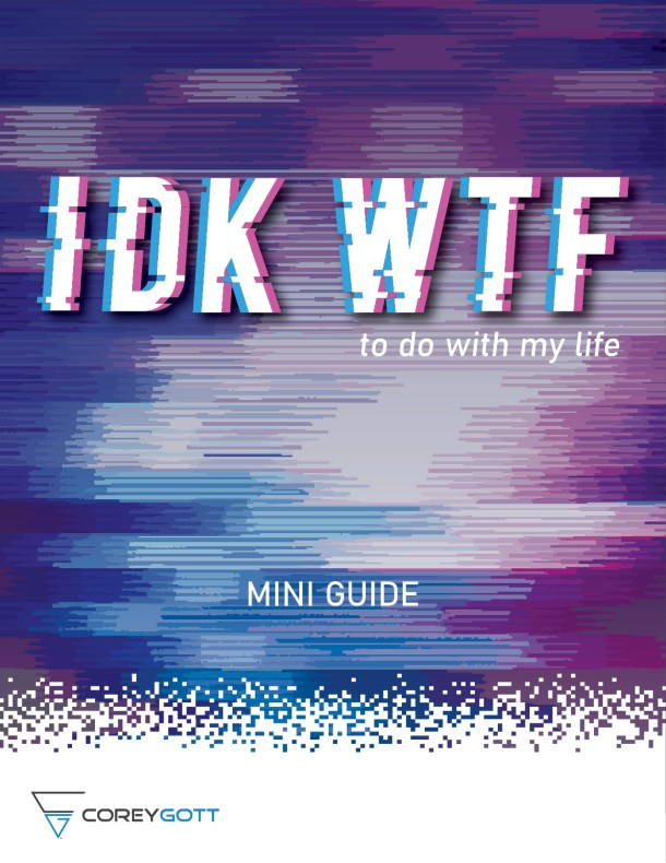 IDK WTF to do with my life mini guide cover by corey gott