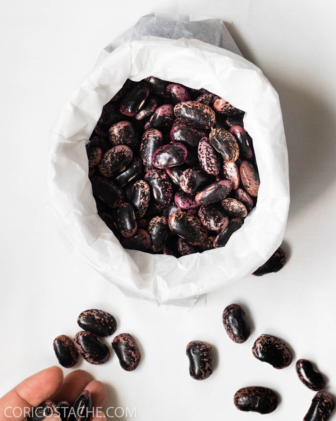 Easy Scarlet Runner Beans Salad