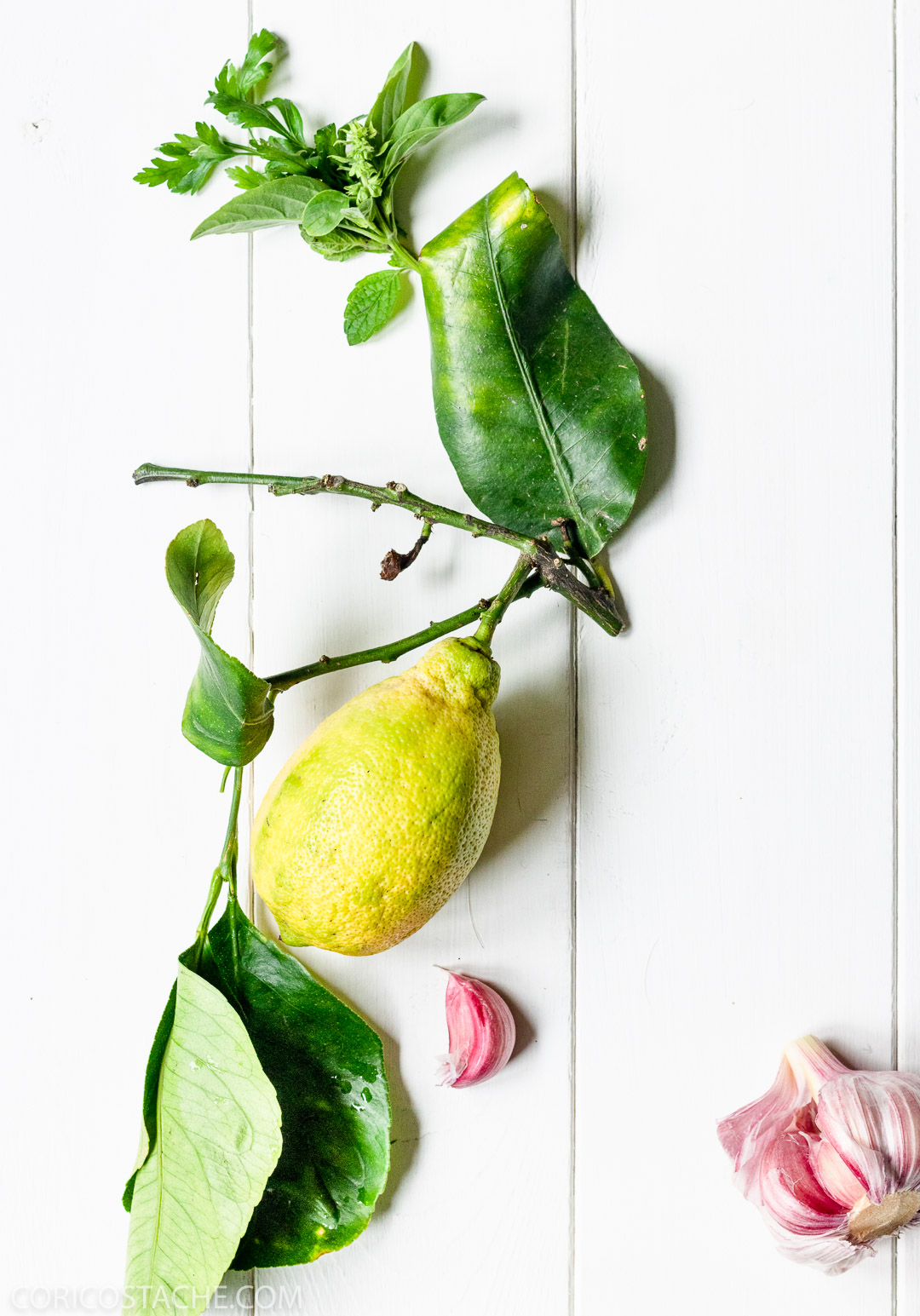 Seared Endives with Gorgonzola & Mint Gremolata