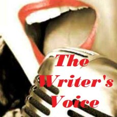 The Writer's Voice Blogfest #41