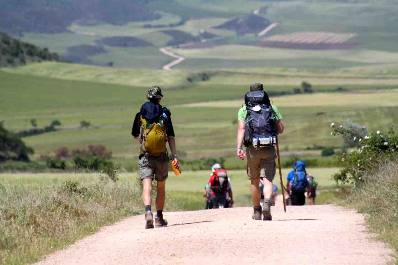 Image result for camino walk