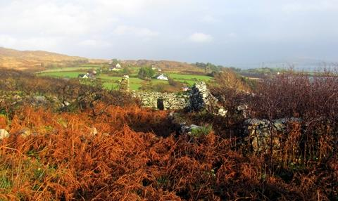 The Remains of the Bardic School on the Sheeps' Head Peninsula