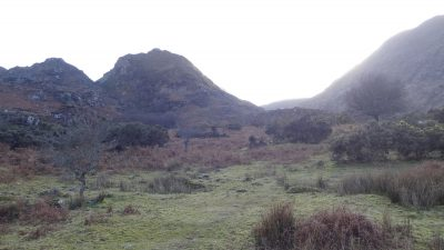 The Cappagh Glen