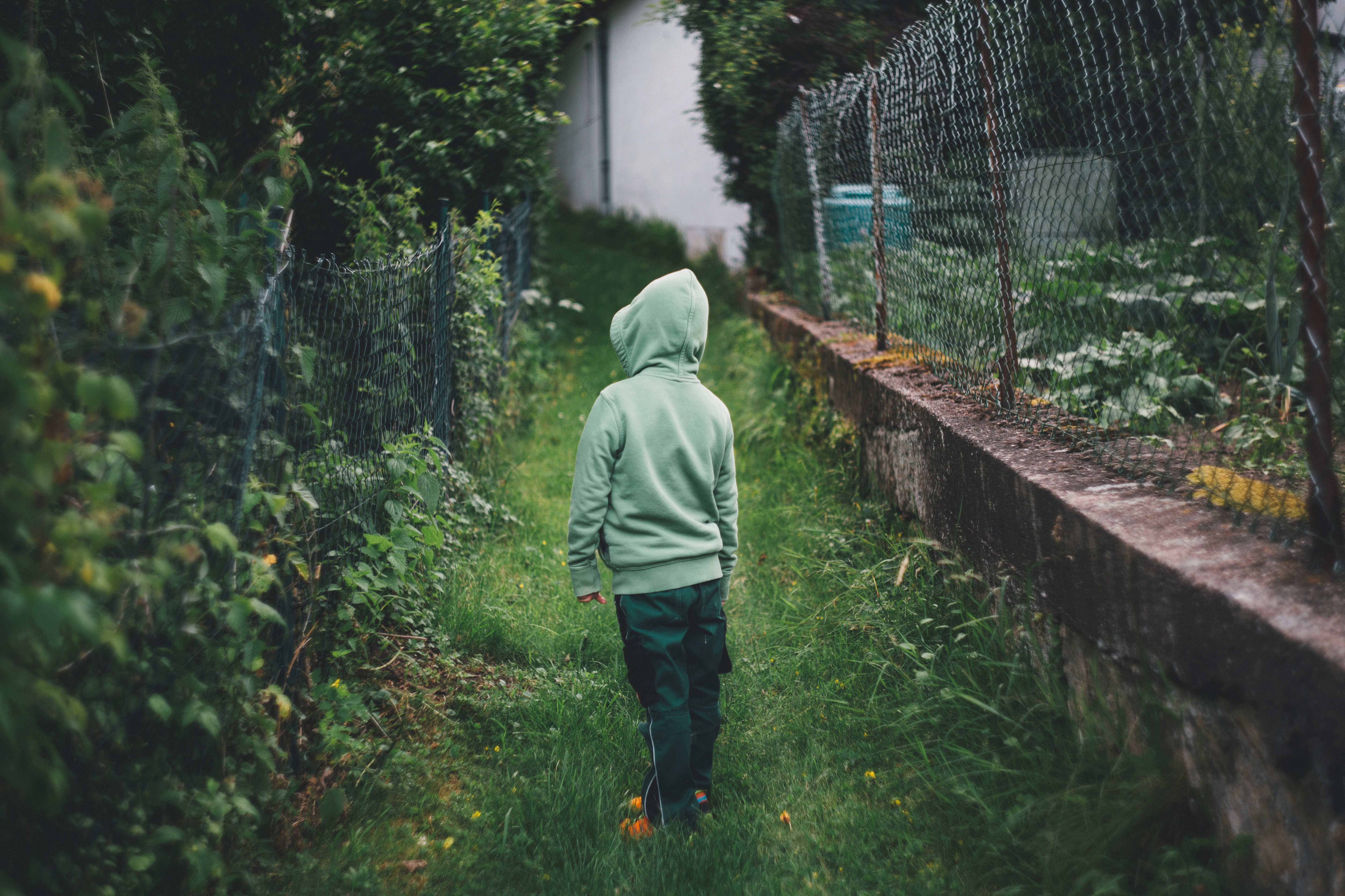 boy standing on grass and facing fence during daytime