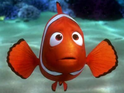 Image result for marlin clownfish