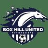tcf_logo_box-hill-united