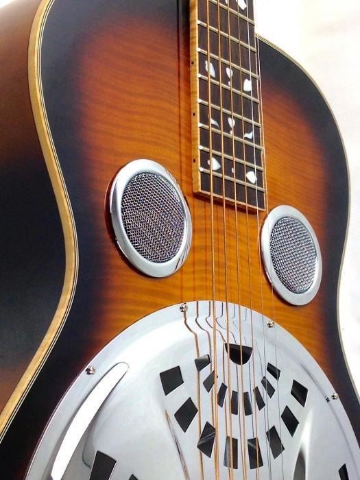 Gold Tone PBR D Paul Beard Roundneck Deluxe