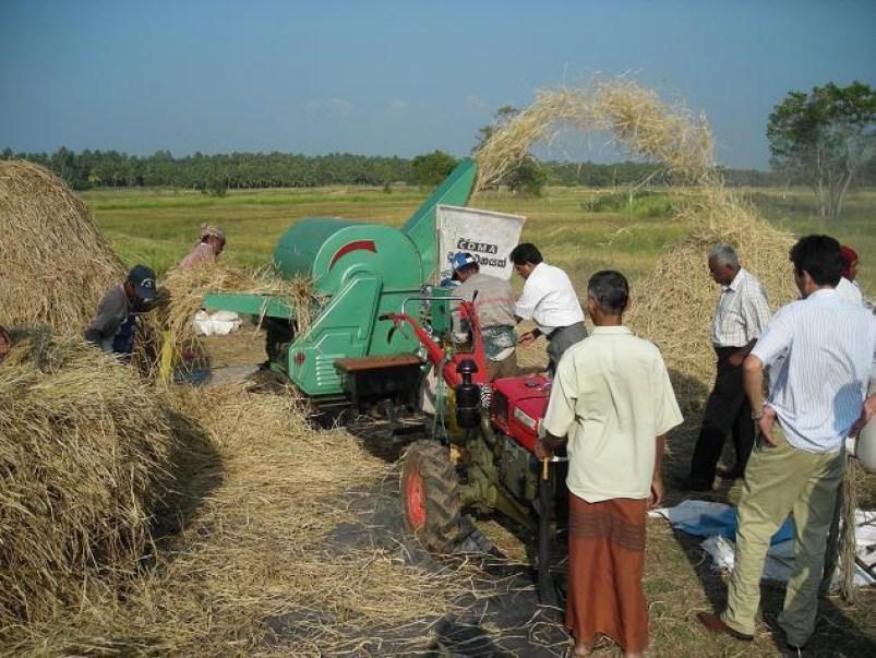 sorghum thresher machine price