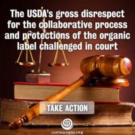 CI_USDAgrossDisrespect_1