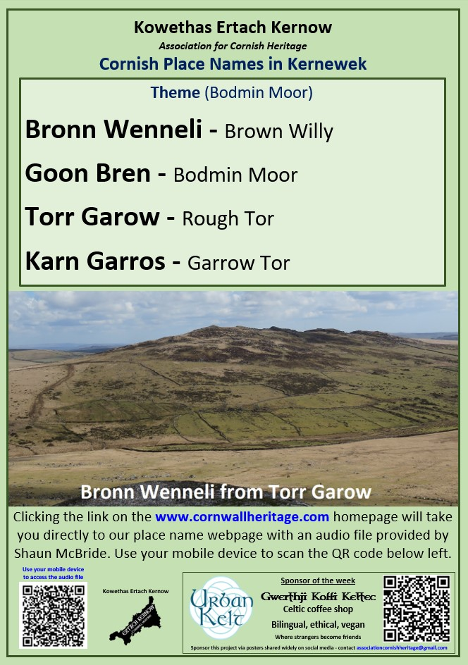 Place Names of the Week - Bodmin Moor