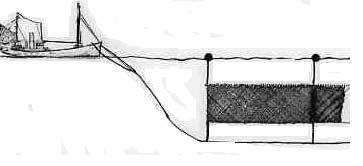 A drift net