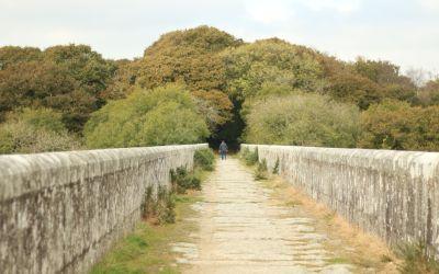 Temporary closure at Treffry Viaduct