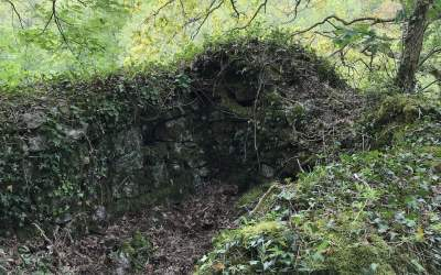 Treffry Viaduct Crib Hut clearance – would you like to help??