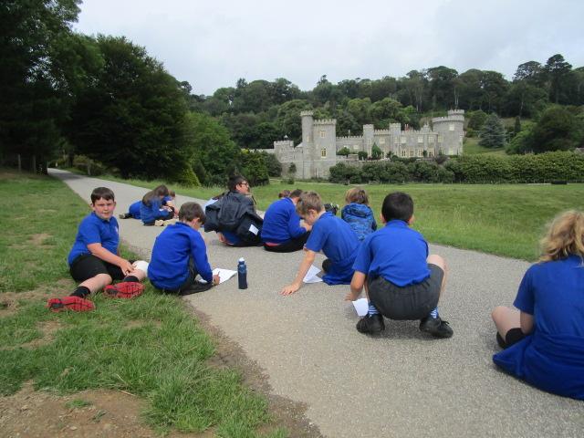 Gwinear School visit Caerhays